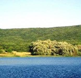 Великолепный участок возле леса в с. Гончарное