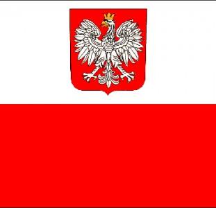 Регистрация в консульство Польши. Польские рабочие и шенген визы. Визы в США