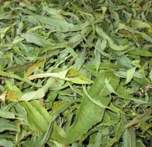 Иван чай лист цельный зелёный, кипрей, Epilobium angustifolium, Карпат, высокогорный, эко, натур.