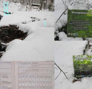 Минеральная вода Плосковская углекислая, гидрокарбонатно-натриевая, борная лечебно-столовая.