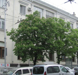 4 -трех комнатная квартира в центре Севастополя
