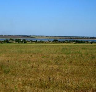Земельный участок от хозяина, недорого. Одесская обл, с.Прилиманское