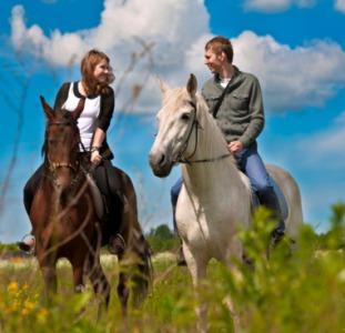 Конные прогулки Киев. Конная прогулка  на лошадях. Конные прогулки отдых.