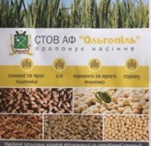 Продам насіння зернових культур Черкаси.