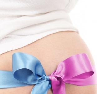 Программасуррогатного материнства, донации яйцеклеток. Гарантированное вознаграждение