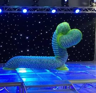 Шоу человек-пружина, слинки шоу на детский праздник в Киеве