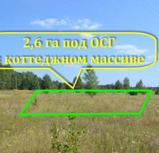 2, 6 га под ОСГ рядом с г. Макаров Киевской области