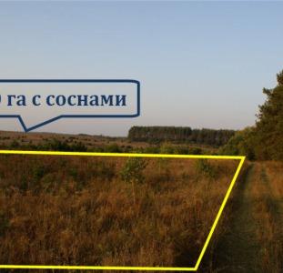 2 га (+2 га) под застройку в 30 км от Киева в Житомирском направлении