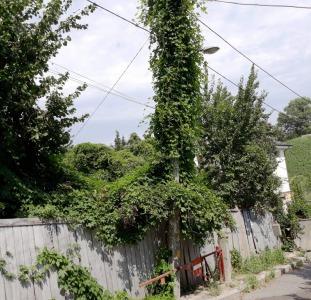 Царское село участок рядом Швейцарское посольство