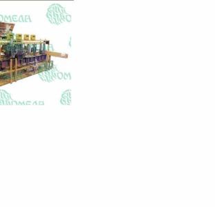 Линия фасовки сыпучих продуктов в бумажные пакеты (032.32.01)