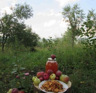 Напитки Сок яблочный домашний с горного сада Карпат.