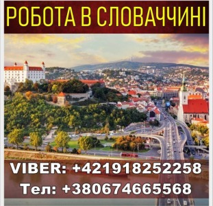 Словакия, бесплатные вакансии. Завод. Открыта запись на Январь
