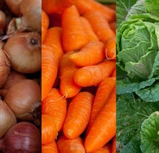 Овощи оптом. Продам овощи