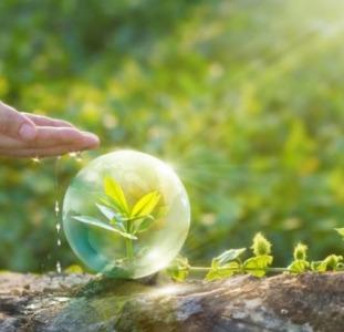 Средства защиты растений для сельского и личного хозяйства