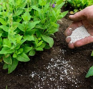 Удобрения для растений. Заказать комплексные и минеральные удобрения