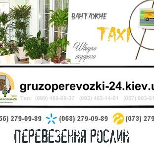 Перевезення рослин Київ
