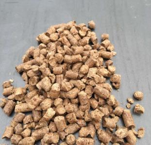 Купить топливные сосновые пеллеты Киев.