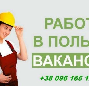 Работа для женщин в Польше.