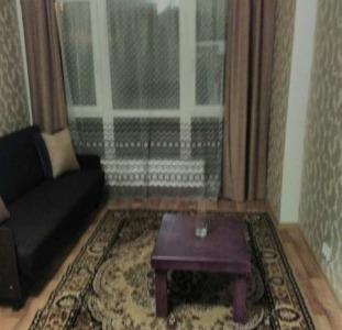 Сдам однакомнатную квартиру в центре парк Шевченко