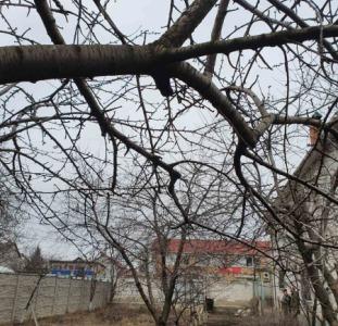 На  участке 4 соток земли по ул. Харьковская угол Костанди