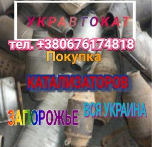 Куплю Дорого Катализатор Запорожская обл.