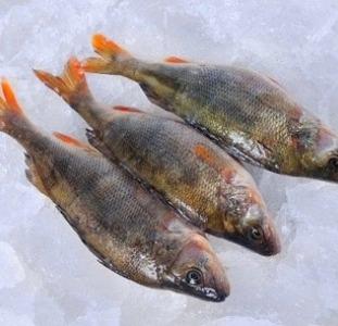 С/м речная рыба оптом.  Икряная рыба.