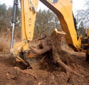 Услуги арбористов. Спил деревьев любой сложности, обрезка веток.