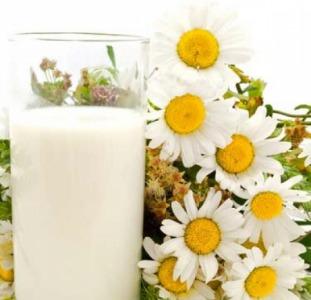 Здоровье, красота Тибетский молочный гриб