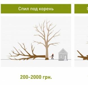 Обрезка деревьев в Харькове