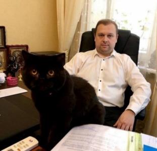 Юридические Услуги адвоката, юриста Киев.