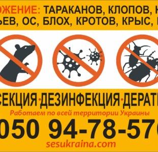 Дезинсекция - уничтожение тараканов, муравьёв