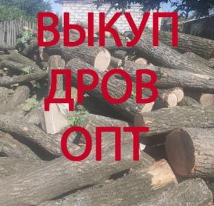 Услуги для бизнеса Закупаем дрова