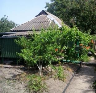 Дома Дача на Потемкинском острове, 5-й причал