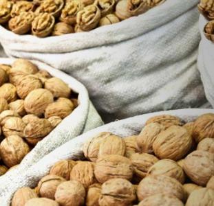 Продаем грецкий орех оптом любой фракции по Украине и на экспорт