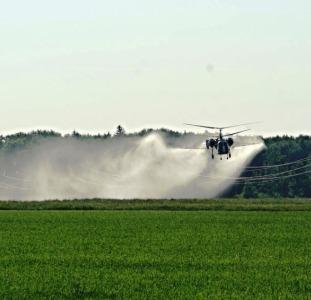 Позакореневе підживлення пшениці ріпаку вертольотом - внесення мікродобрив літаком