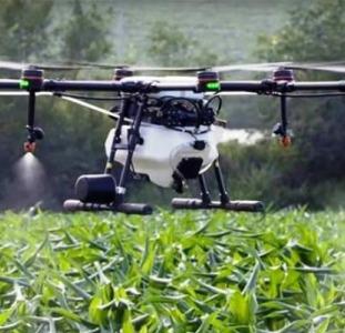 Послуги дрона в рослинництві - услуги дрона в сельском хозяйстве