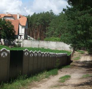 Васильковский, Скрипки (Хлепча)  участок 25 соток.