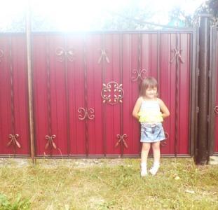 Забор из профнастила Киев,  решётки на окна Киев,  козырьки над входом,  навесы,  ворота,  калитки